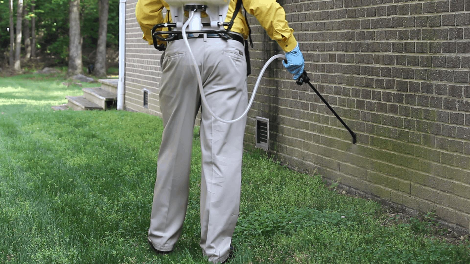 Roach Control Exterminators