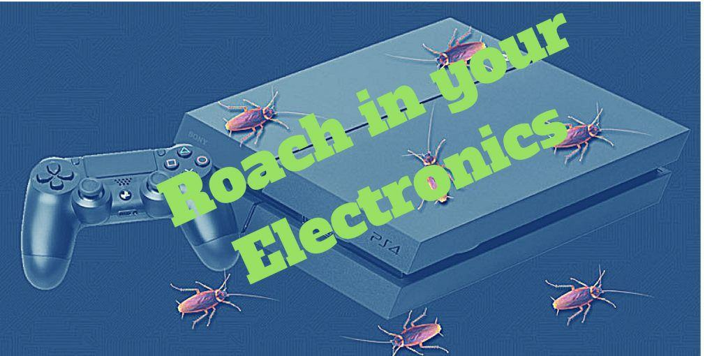 Roach in your Electronics