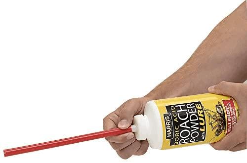 The best powder roach killer